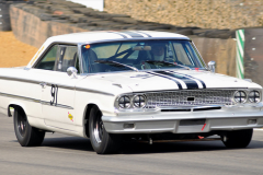 Ford Galaxie (Race)