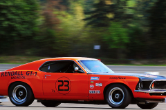Ford Mustang (Race)